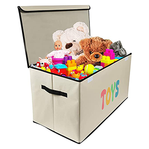 Kids Toy Chests and Organizers